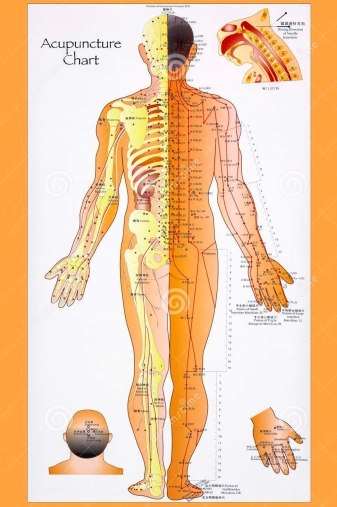 traditional-chinese-acupuncture-chart-system-complementary-medicine-involves-pricking-skin-needles-used-to-31484529